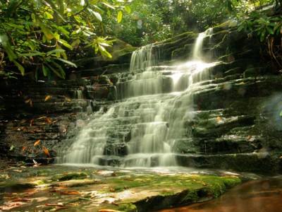 mill-falls