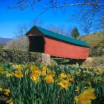 Giles covered bridge with flowers in forefront