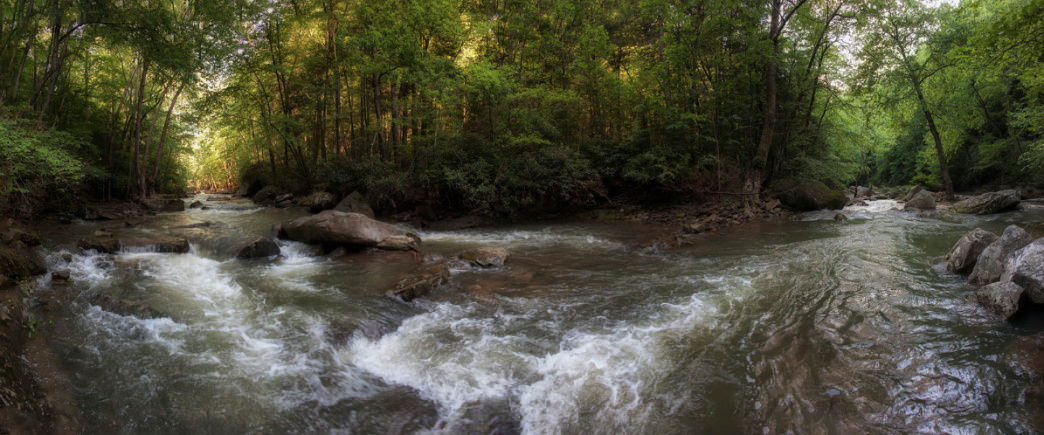 20170609_Virginia_Mill Creek Nature Park