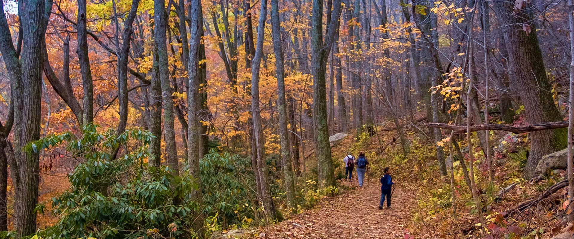 Fall hikes to the Cascades