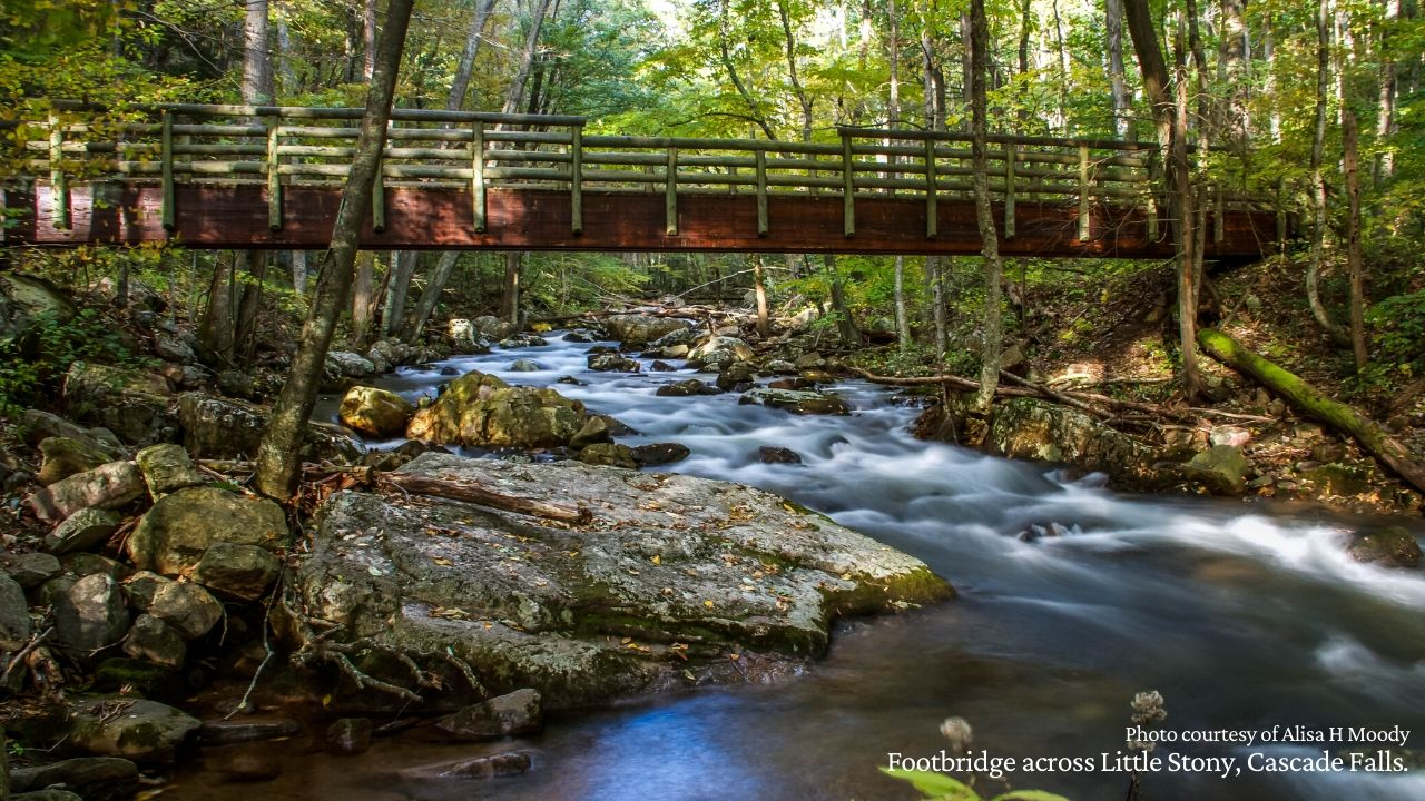 Footbridge over Little Stony Creek, Pembroke