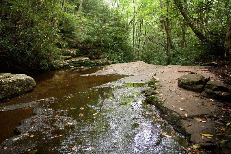River at Mill Creek