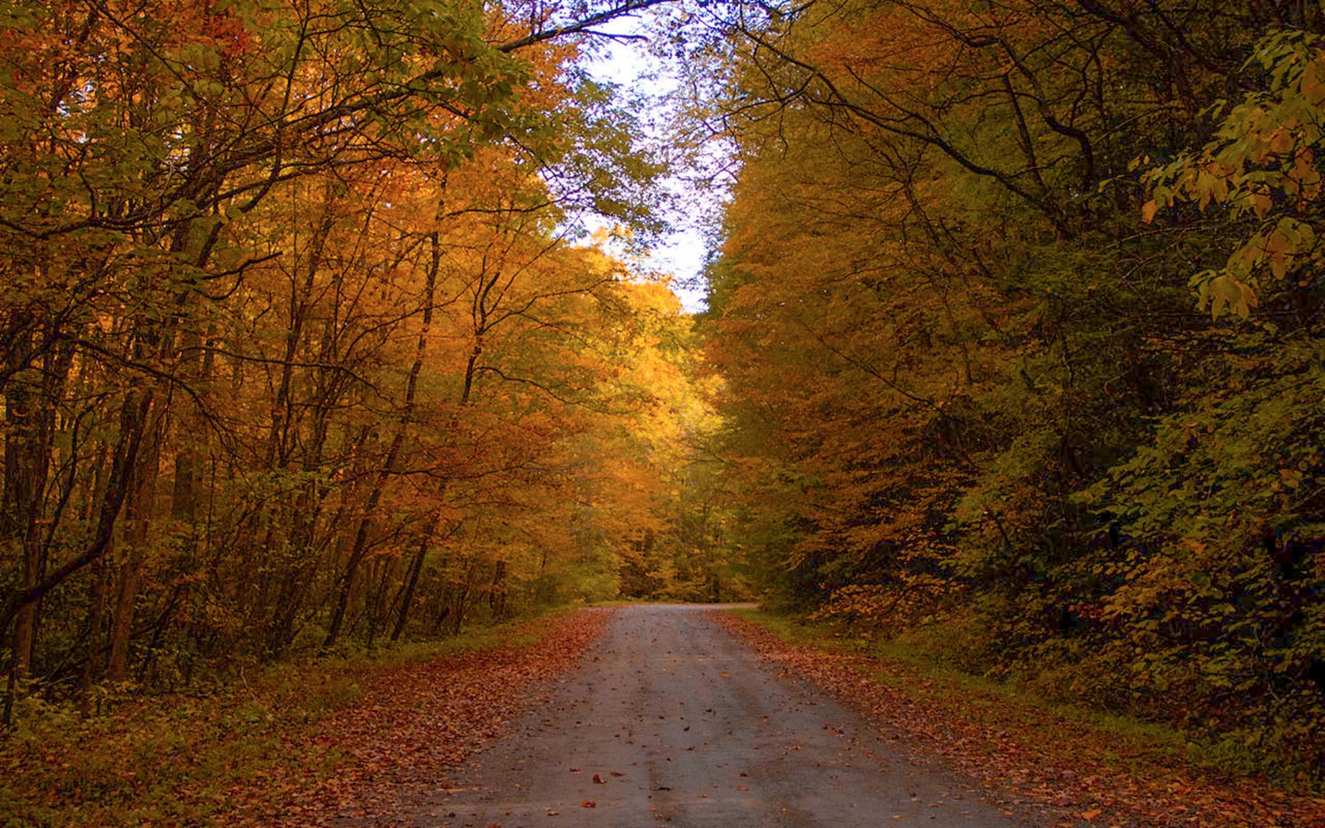 backroads in the fall