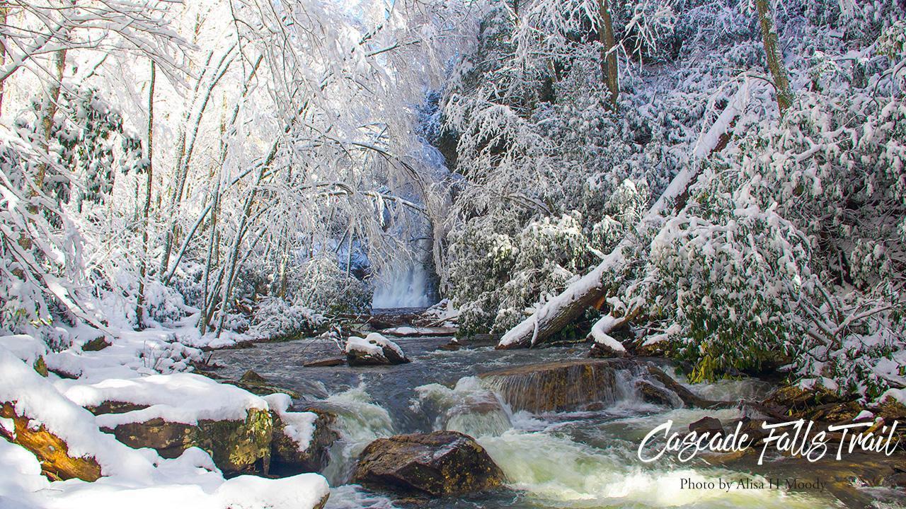 Cascade Falls Trail frozen
